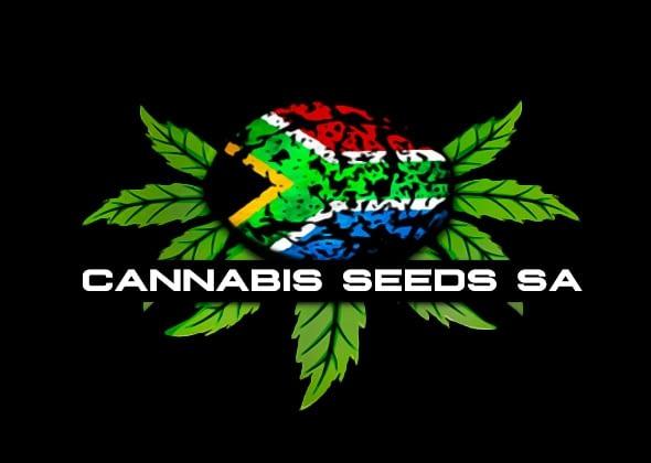 Cannabis Seeds SA